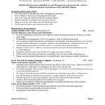 Advertising Sales Representative Resume Sample