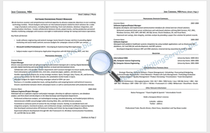 CV Writing Sample