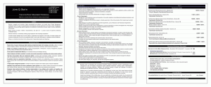 Functional Resume Format 2012