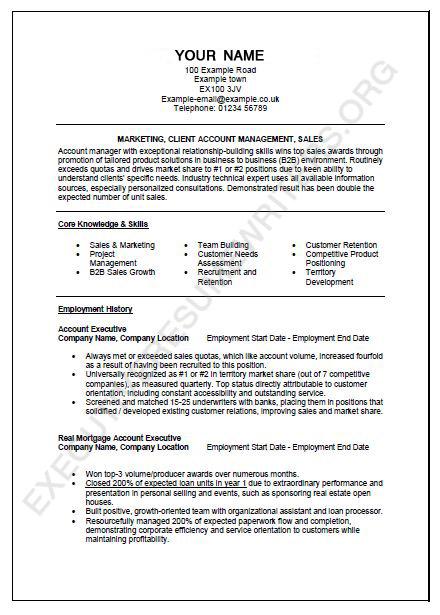 executive CV format