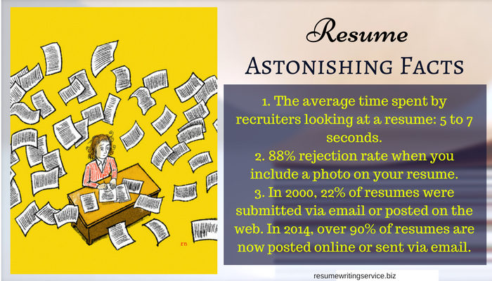 Expert resume writing 2013