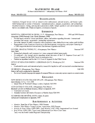 CV Objective Statement